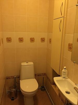 Apartment near Osokorky metro station, Monolocale, 013
