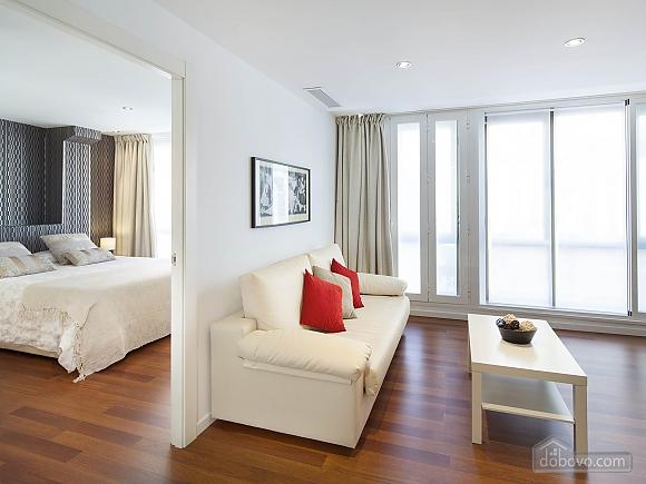 Luxury apartment Constitucion, Un chambre (11636), 004