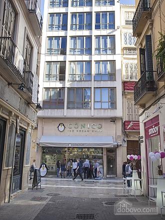 Luxury apartment Constitucion, Un chambre (11636), 014