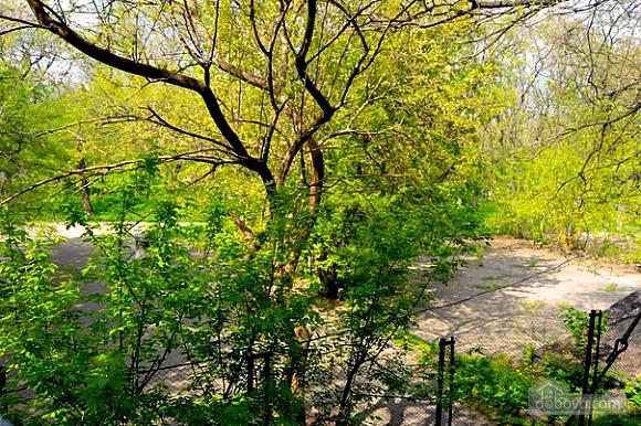 The apartment in Shevchenko Park, Studio (46434), 009