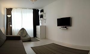 Шикарная квартира, 1-комнатная, 001