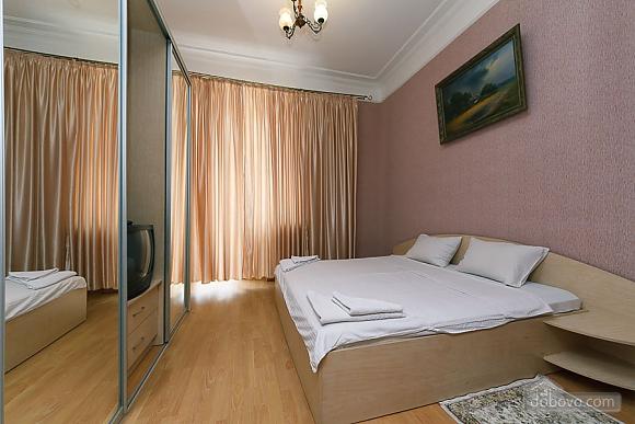 Comfortable apartment on Khreschatyk, Un chambre (18653), 002