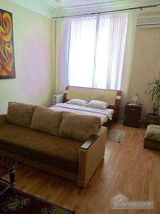 Comfortable apartment on Khreschatyk, Un chambre (18653), 010