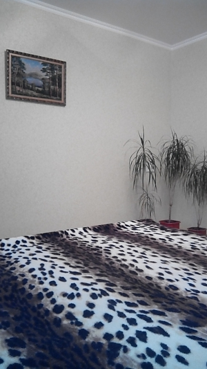 Apartment near the airport Boryspil, Studio, 004