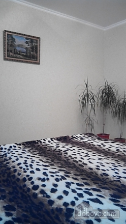Apartment near the airport Boryspil, Studio (53785), 004