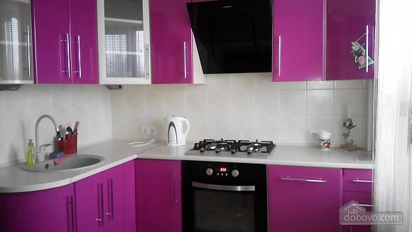 Квартира возле Аэропорта Борисполь, 1-комнатная (53785), 002