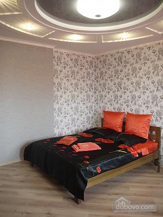 Luxury apartment with designer's renovation, Monolocale (90248), 002