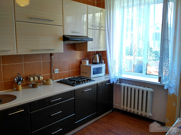 Apartment in the center, One Bedroom (91450), 010