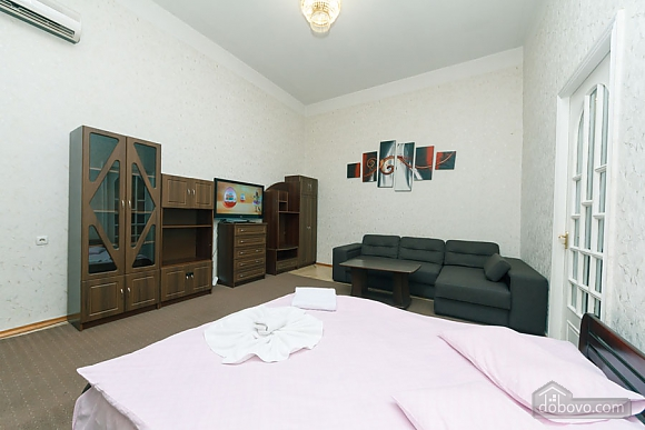 Apartment in the center, Monolocale (97493), 004