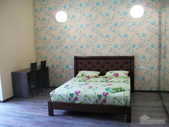 Квартира в центре города, 1-комнатная (31442), 002