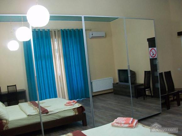 Квартира в центре города, 1-комнатная (31442), 092