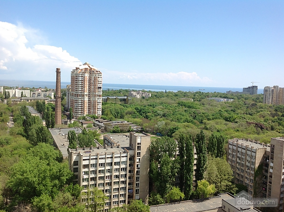 Apartment, Monolocale (84250), 012