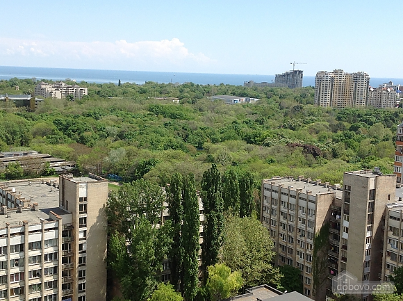Apartment, Monolocale (84250), 014