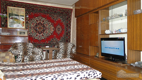 Apartment in center of Dnipropetrovsk, Studio (49441), 003