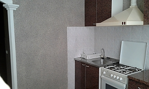 Apartment in the center, Un chambre, 011