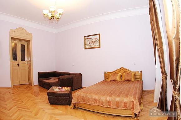 Квартира в центрі міста, 1-кімнатна (56934), 001