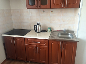 Comfortable apartment in Ulan-Ude, Monolocale, 003