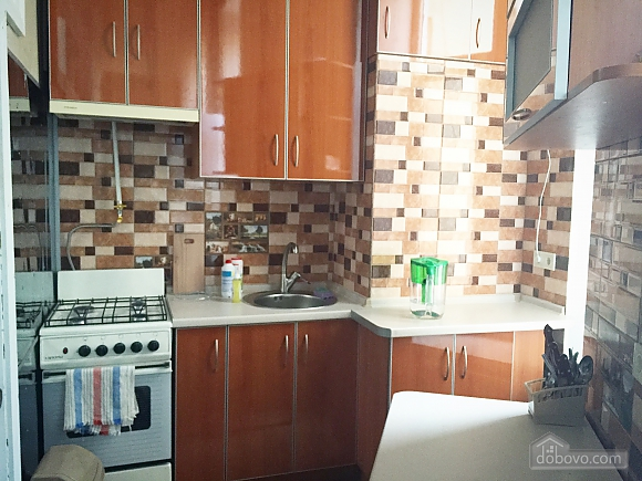 Spacious apartment in the heart of Odessa, One Bedroom (77578), 006