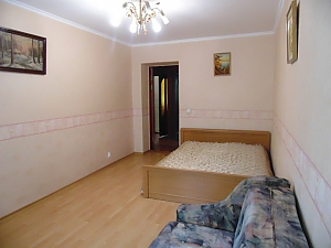 Cozy apartment near the Donetsk National University, One Bedroom, 001