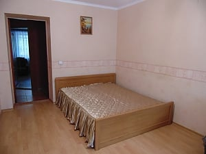 Cozy apartment near the Donetsk National University, One Bedroom, 003