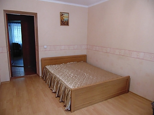 Cozy apartment near the Donetsk National University, Un chambre, 003