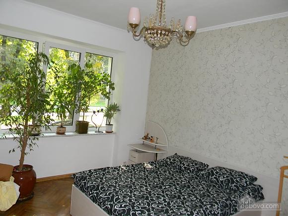 Apartment in Lviv, Monolocale (55935), 001