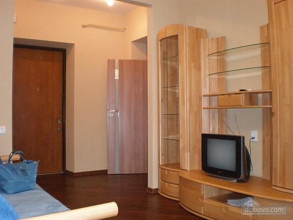 Cozy apartment in the center of Kharkov, Una Camera (28333), 003