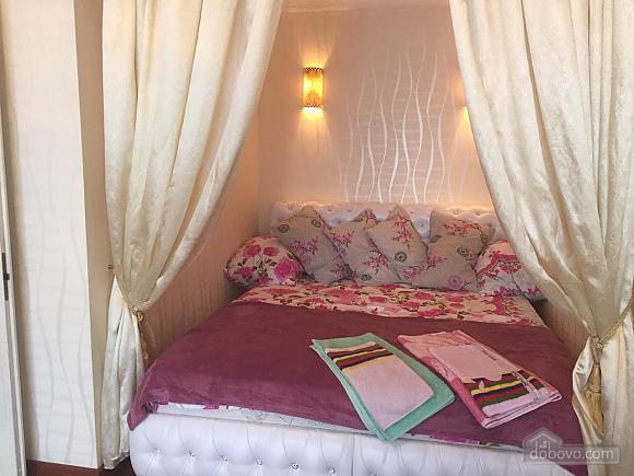 Luxury apartment in perfect condition near to Shevchenko park, Un chambre (28358), 001