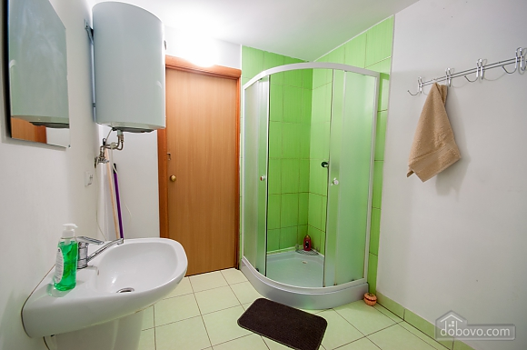Apartment in the city center, One Bedroom (45651), 009