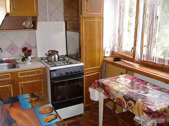 Квартира со всеми удобствами, 1-комнатная (18356), 002