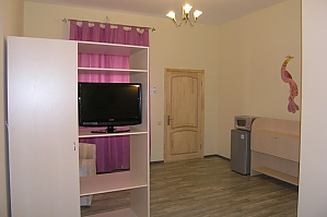 Apartment with nice interior, Studio, 004