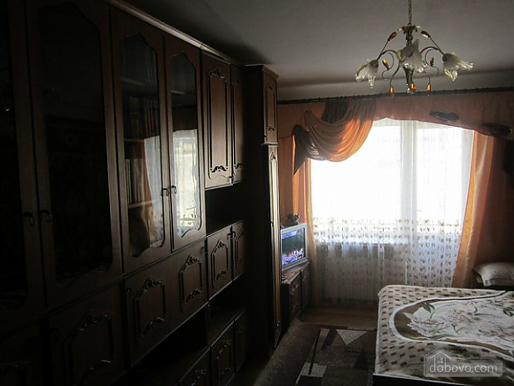 Apartment in Morshyn with air conditioner, Studio (80576), 002