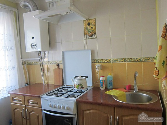 Apartment in Morshyn with air conditioner, Studio (80576), 005
