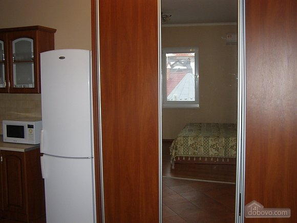 Apartment in the center of Truskavets, Studio (13316), 007