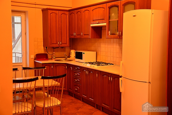Apartment in the center of Truskavets, Studio (13316), 012