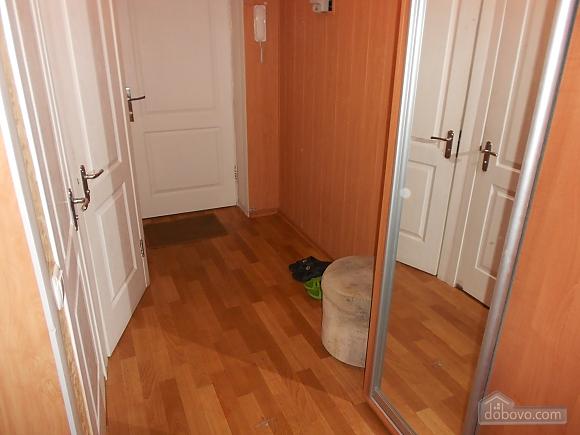 Apartment in Zaporozhye, One Bedroom (17293), 004