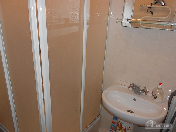 Apartment in Zaporozhye, One Bedroom (17293), 006