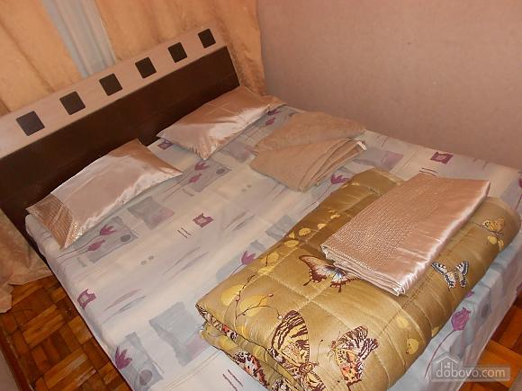 Apartment in Zaporozhye, One Bedroom (17293), 001