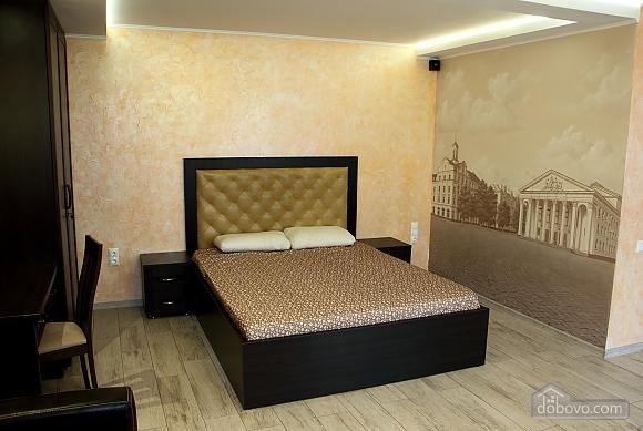 Апартаменты в центре Чернигова, 1-комнатная (18780), 001