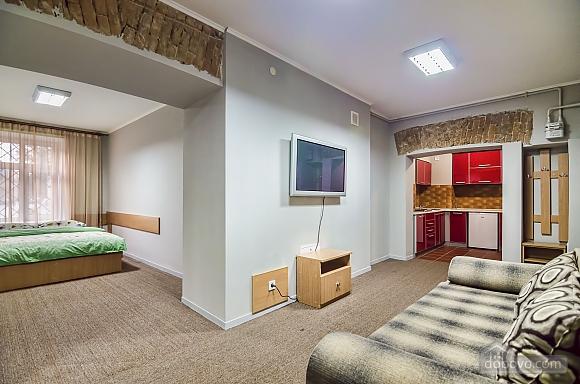 Квартира в центре Львова, 1-комнатная (54133), 001