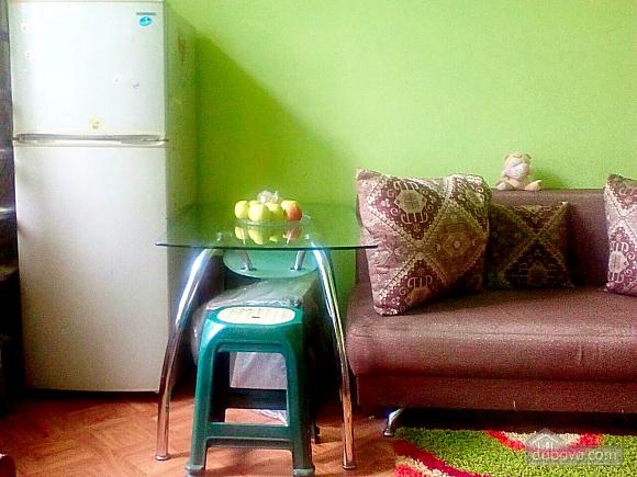 Apartment near the Ukrainian theater, Studio (97303), 005
