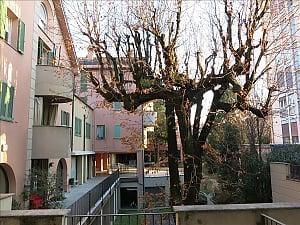 Resegone, Zweizimmerwohnung, 022