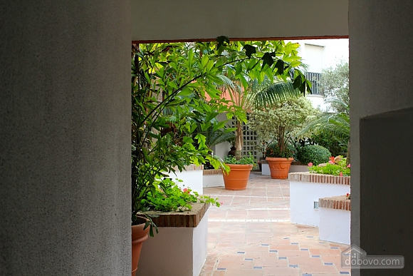 Apartment in Puerto Banus, One Bedroom (84867), 006