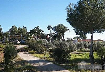 Casa Rural Cortijo La Jarana Real, Sieben+ Zimmern (86842), 009