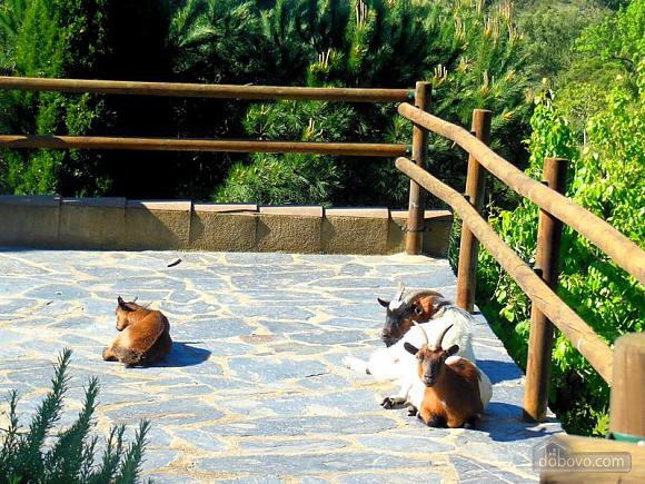 Masia Can Bavi Costa Maresme, Four Bedroom (48597), 035