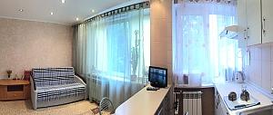 Квартира-студио с евроремонтом в центре Печерска возле ботанического сада, 1-комнатная, 002