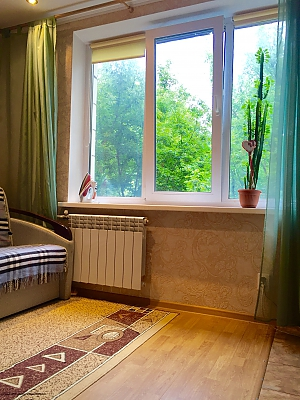 Studio apartment with renovation in the center of Pechersk near the Botanic garden, Studio, 010