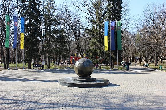 Люкс с красивым видом на сад Шевченко, 2х-комнатная (50295), 009