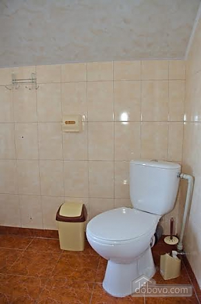 Apartment in Morshyn, Studio (80574), 006