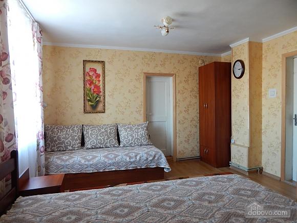 Apartment in Morshyn, Studio (80574), 001